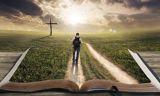 多難の時代に希望を育てるための教養書5選