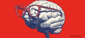脳をフル活用するために読んでおきたい5冊